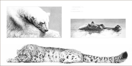 Page spread of polar bear snow leopard and hippo in Gary Hodges book Heart and Soul