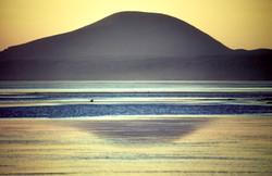 Baja California Sunset by Dave Currey