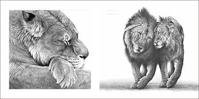 Boy and Christian lions original by Gary Hodges drawn for George Adamson memorial