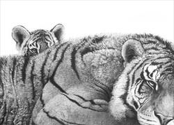 Pride and Joy (tigress and cub) 1998