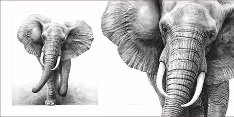 Drawing of elephants in page spread from Gary Hodges' book Heart and Soul