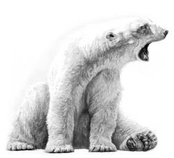 Sleepyhead 1999 (polar bear)