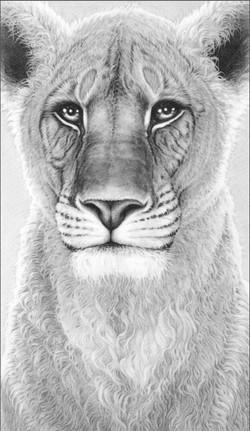 Spirit of Elsa 2005 (lioness)