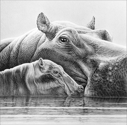 Baby Love (Hippos)