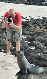 Photographing Galapagos sealion