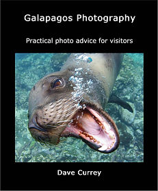 A practical guide with advice for visitors