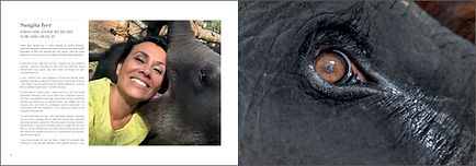 The love of elephants Sangita Iyer