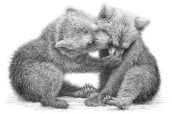 Brown bear cubs 1991