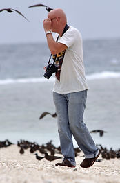 Lady Elliot island in Australia with Gary Hodges taking photographs of brown noddies.