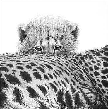 Cheetah Cub Emb for Remembering Cheetahs