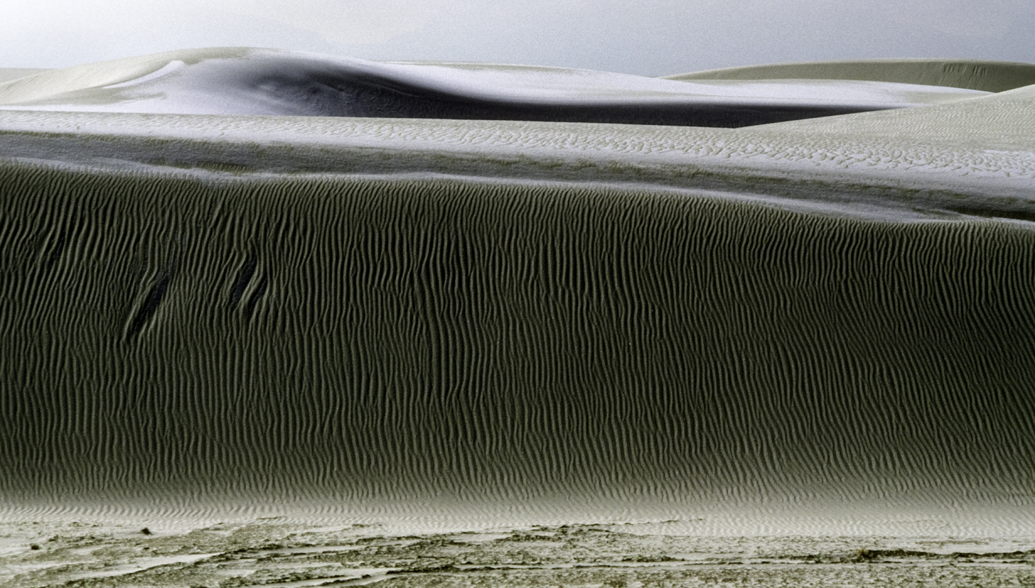 Snow on Sand Dunes by Dave Currey