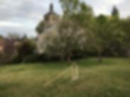 Snímek obrazovky 2020-05-15 v17.19.11.
