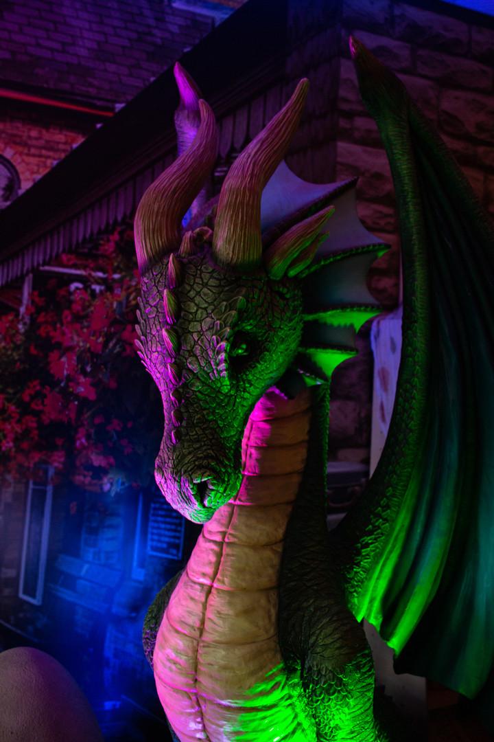Aldrun, Professor Grindel's Dragon, The Wizard Express
