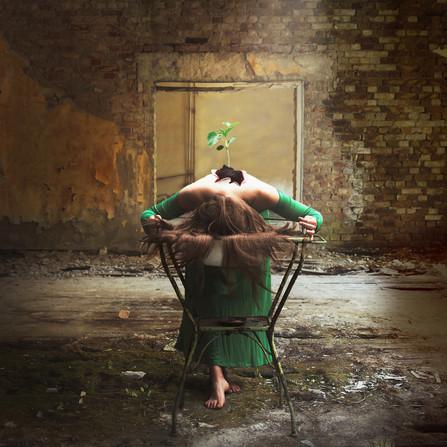 In decay she grew_.jpg