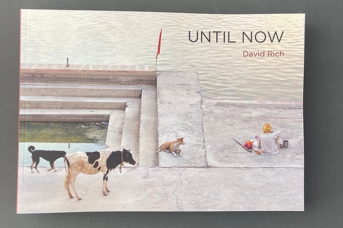 UNTIL NOW by David Rich