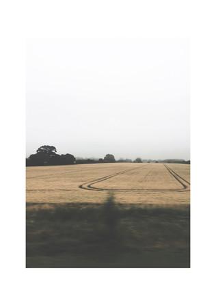 passing field.jpg