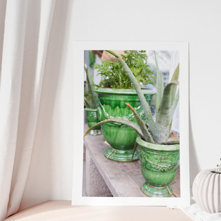 Green Collection I