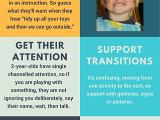 """🌟5 Effective Steps for transforming 2 year olds' behaviour from """"terrible"""" to """"terrific""""🌟"""