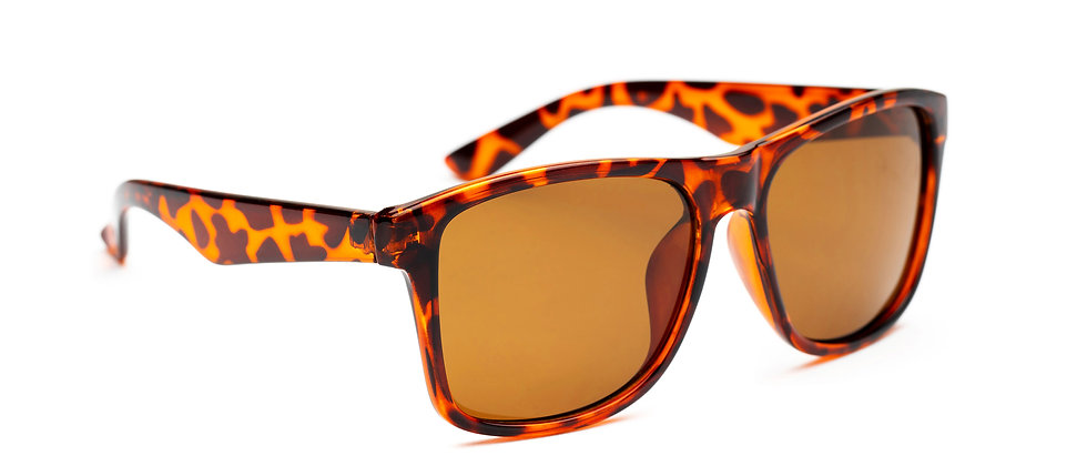Bliz Polarized -Demi Brown A