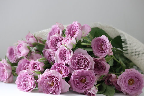 10 Lavender Spray Roses bouquet