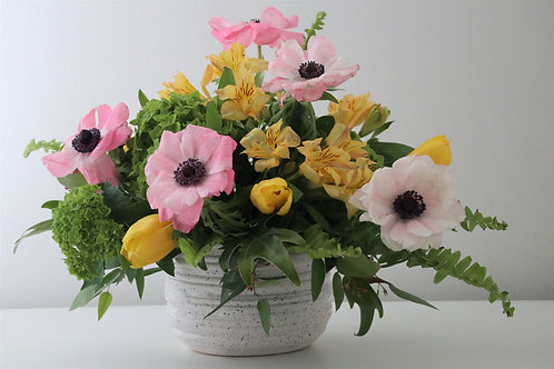 Spring arrangement #2