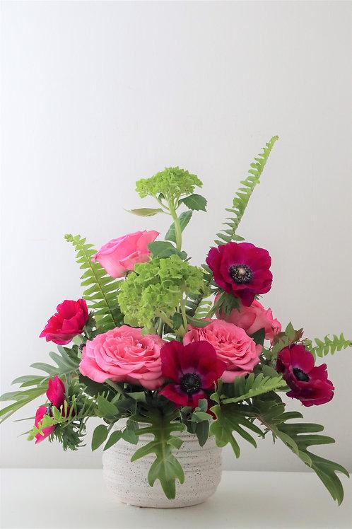 Spring arrangement #1