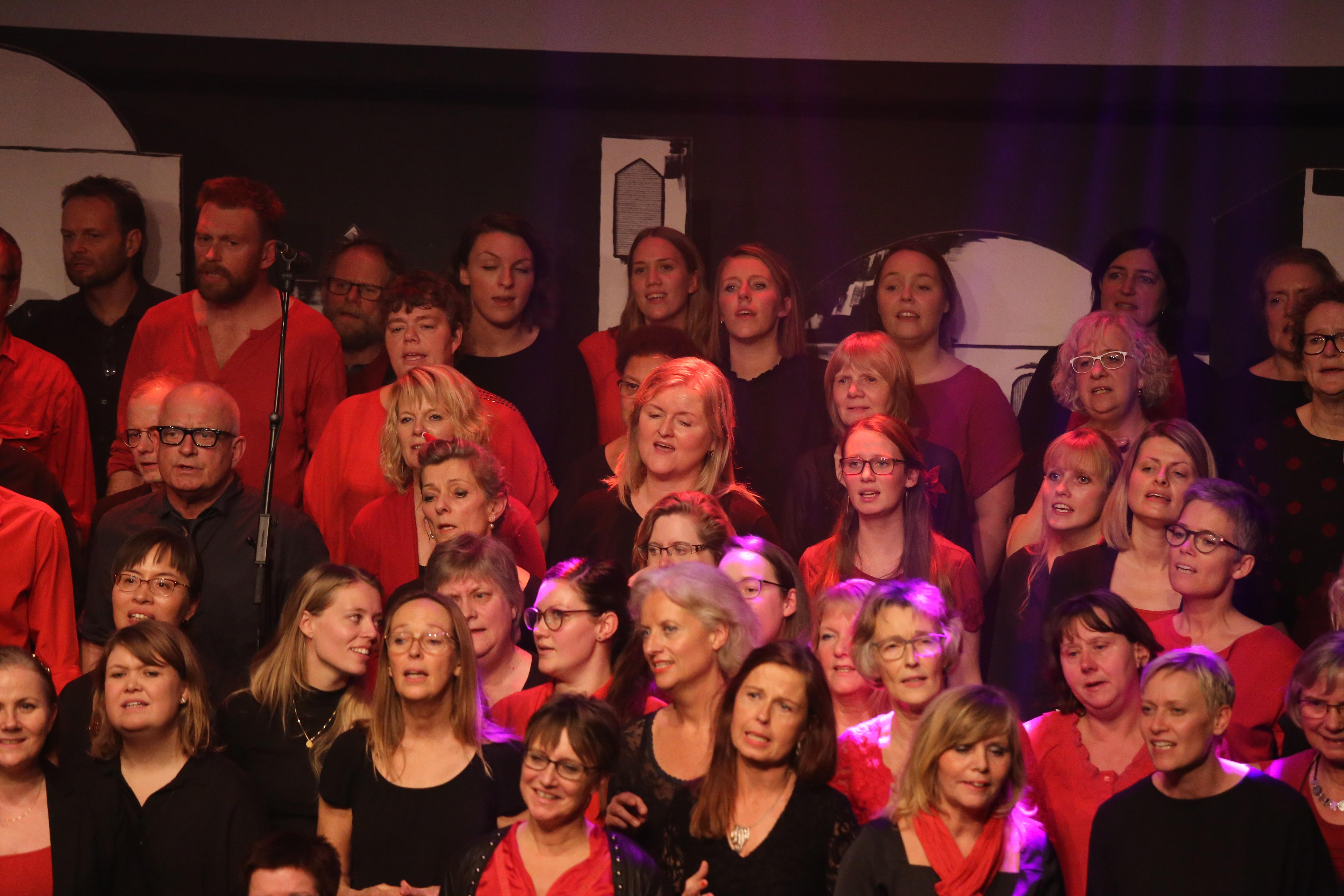 Julekoncert 2016 (14).jpg