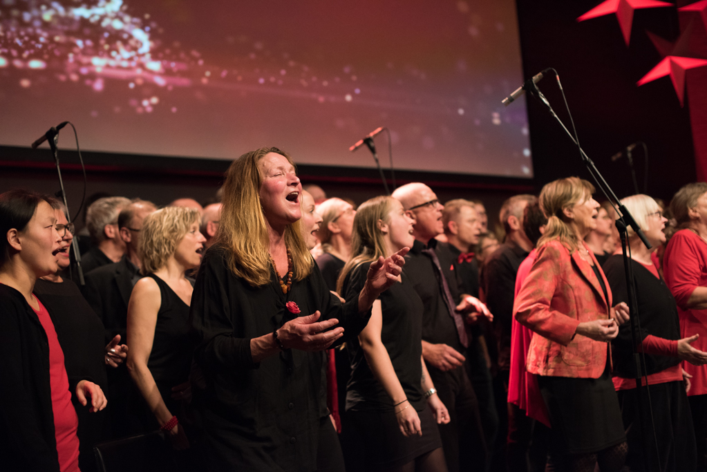 Julekoncert 2015-36.jpg