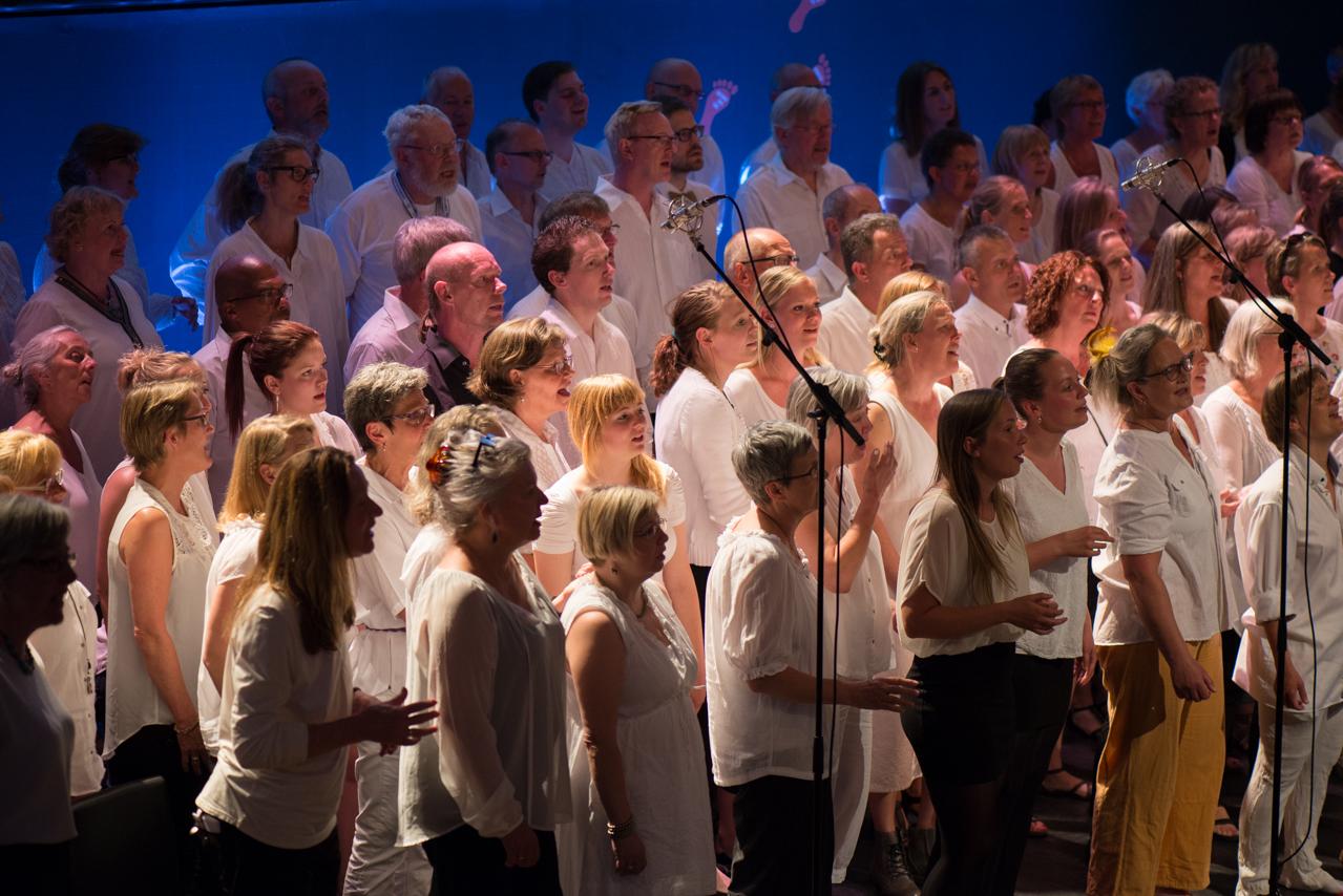 Forårs_koncert_ÅGS_2014-28.jpg
