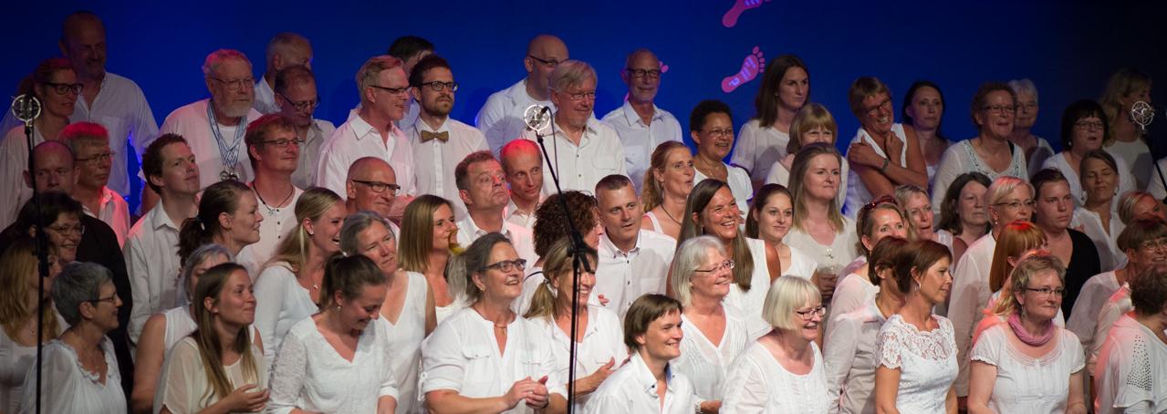 Forårs_koncert_ÅGS_2014-27.jpg