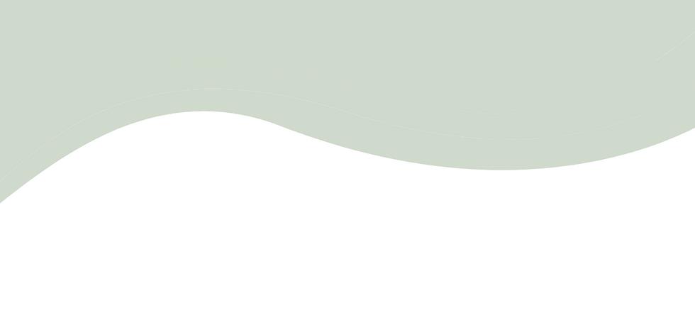 Website strip backgrounds2.png