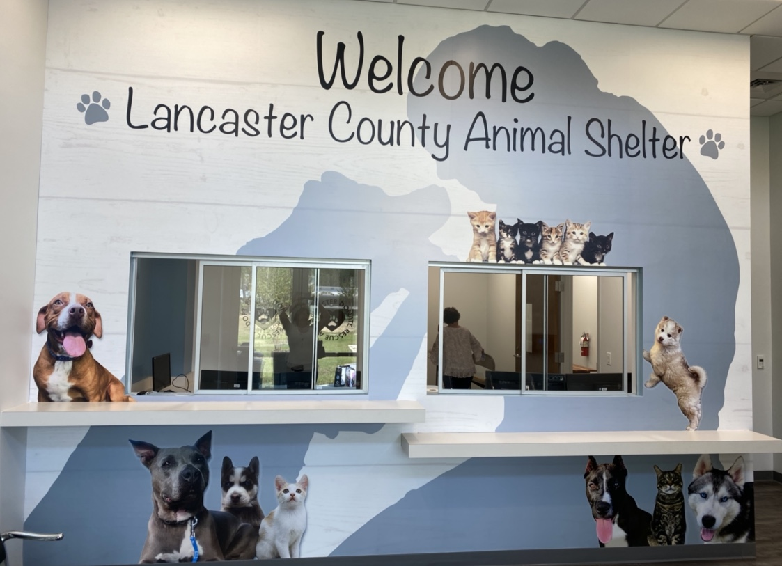 New Shelter Lobby Mural installed by Rapid Signs of Lancaster