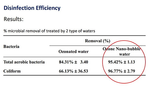 Nanobubble Disinfection Efficiency - The Whitewater Company
