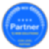 Wix%20Partner%20ICON_edited.png