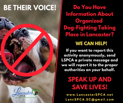 BE THEIR VOICE!