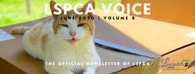 LSPCA Newsletter header.png