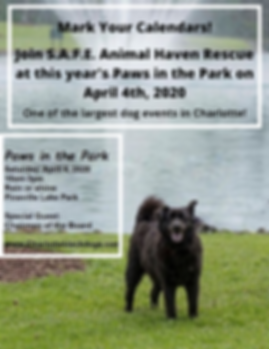 Paws in the park 2020.png