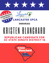 Kristen Blanchard for senate.png