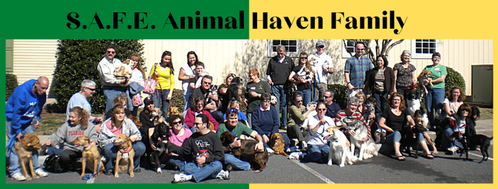 SAFE Animal Haven Family.png