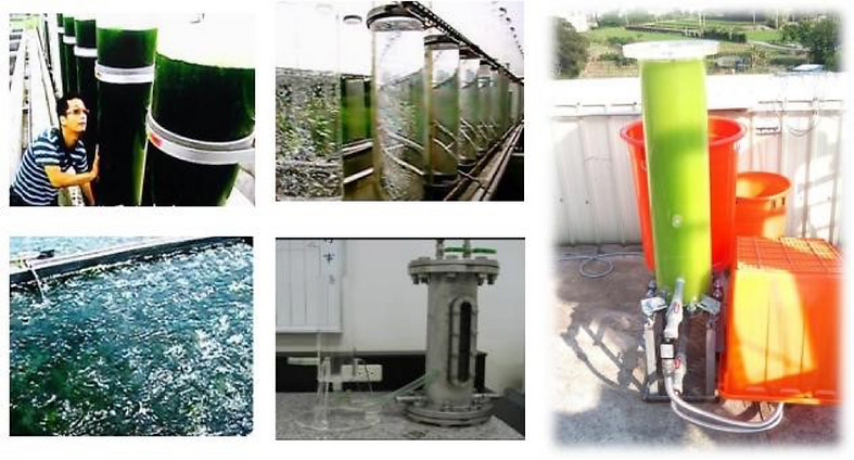 CO2 Micro Bubbles – Seaweed growth, ITRI Green Energy and Environmental Research Laboratories- The Whitewater Company