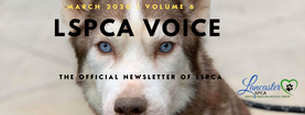 LSPCA Newsletter headerR MARCH 2020.png