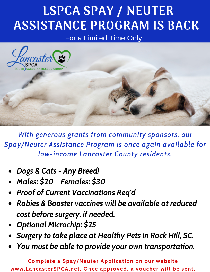 Low Cost Spay/Neuter Program