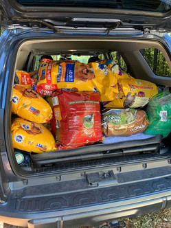 Donations collected at an elementary school drive