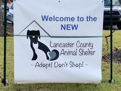Welcome! The NEW shelter is OPEN!
