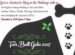 Fur Ball Gala Social Media Ad