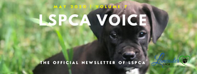 MAY LSPCA Newsletter header.png