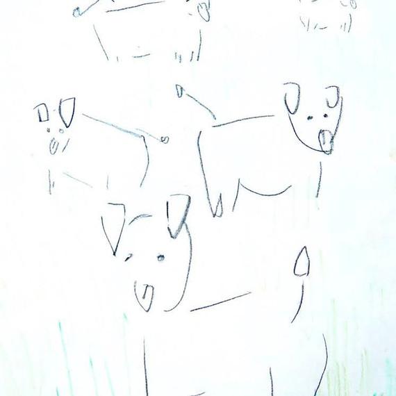 controled an animals.terumigoto.jpeg