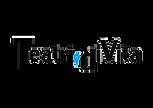 Teatri di Vita Logo WEB.png