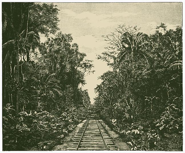 Distrito Colón, La lína férrea atravesando la selva virgen, reproduced in El Zulia Ilustrado 1, no. 31, June 30, 1891