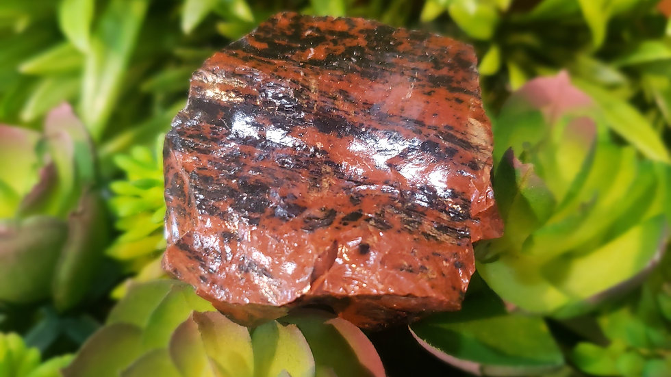 Large Mahogany Obsidian